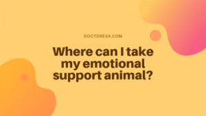 Where can I take my emotional support animal?