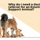 1 Why do I need a doctor's referral for an Emotional Support Animal?
