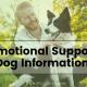 Emotional Support Dog Information