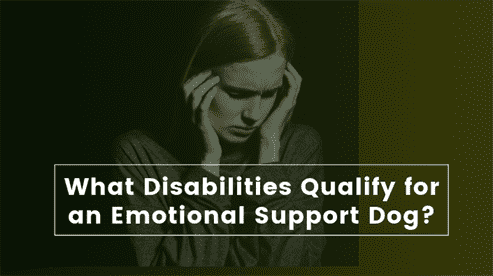 What Disabilities Qualify for an Emotional Support Dog?