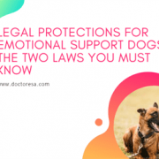 1 Legal Protections for Emotional Support Dogs: The Two Laws You MUST Know
