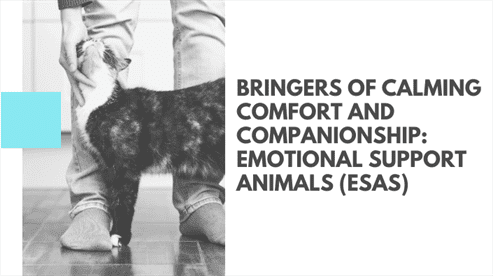 Bringers of Calming Comfort and Companionship: Emotional Support Animals (ESAs)
