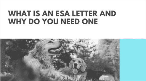 What is an ESA Letter and Why Do You Need One