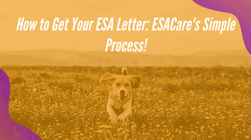 How to Get Your ESA Letter: ESACare's Simple Process!
