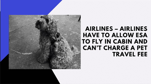 Airlines – Airlines Have to Allow ESA to Fly in Cabin and Can't Charge a Pet Travel Fee