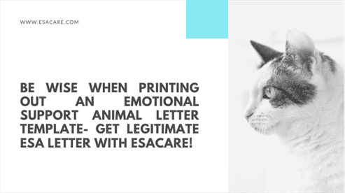 Be Wise When Printing Out an Emotional Support Animal Letter Template- Get Legitimate ESA Letter with DoctorESA!