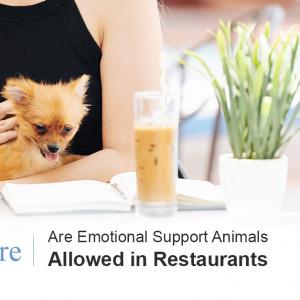 ESA's in Restaurants