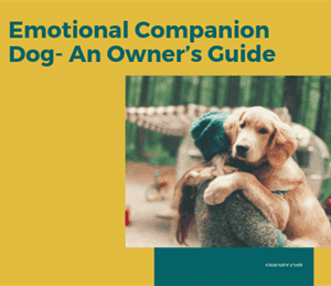 1 Emotional Companion Dog- An Owner's Guide