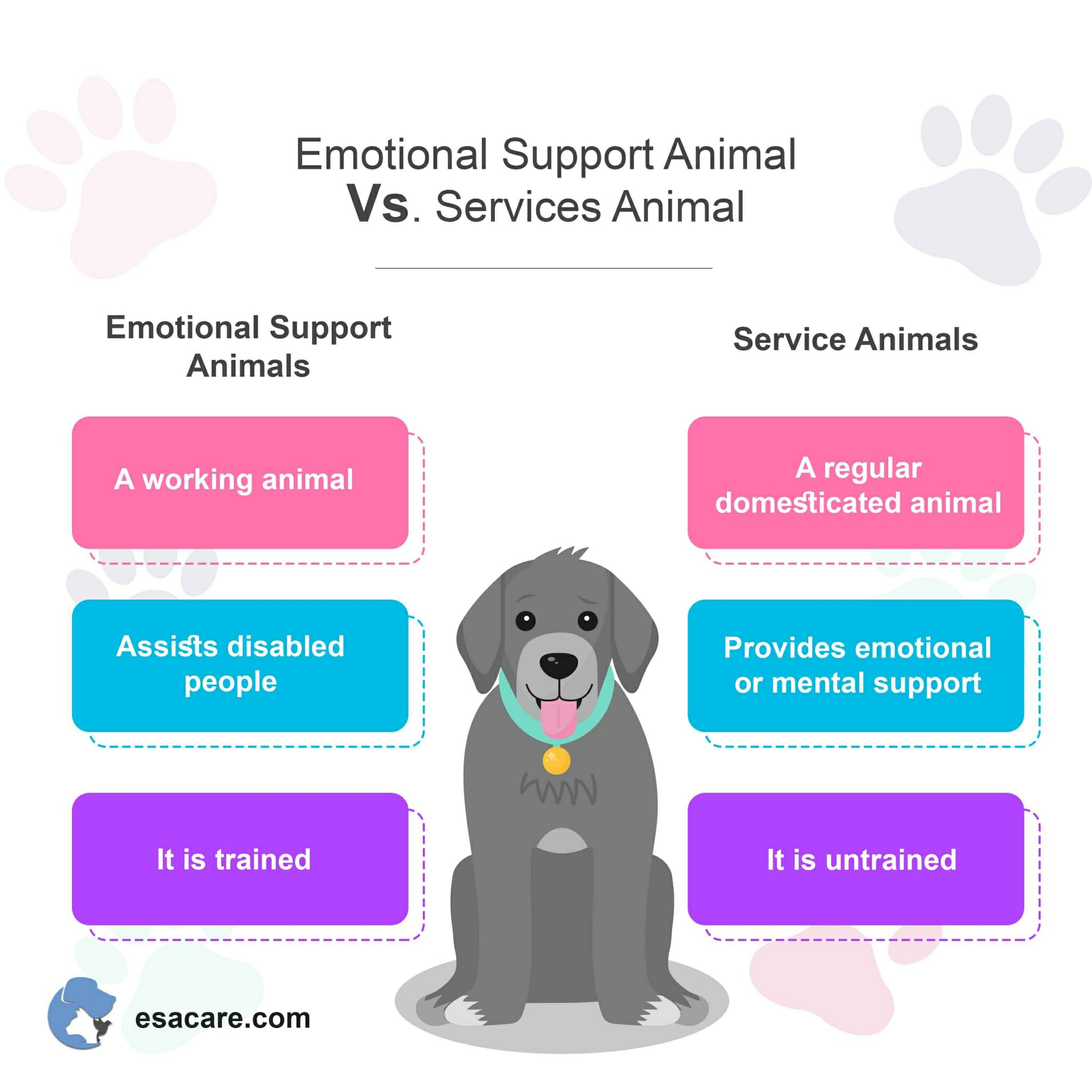 ESA vs service animal