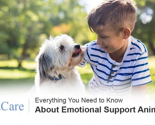 Emotional Support Animals