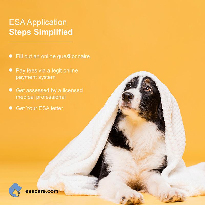 ESA Application