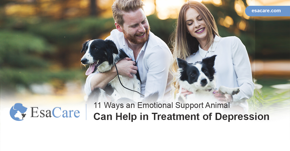 Emotional support animals for depression