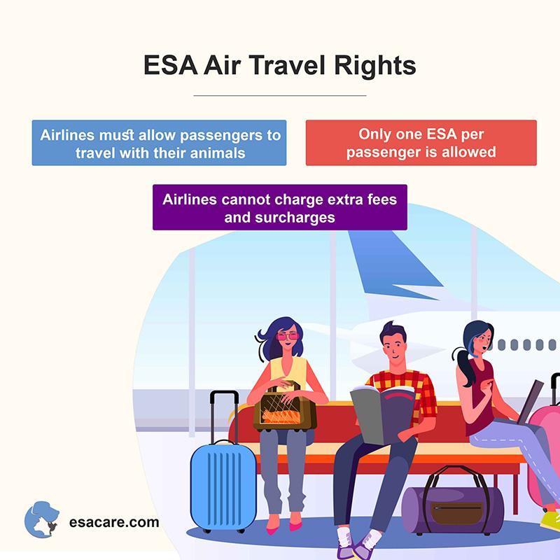 esa air travel rights