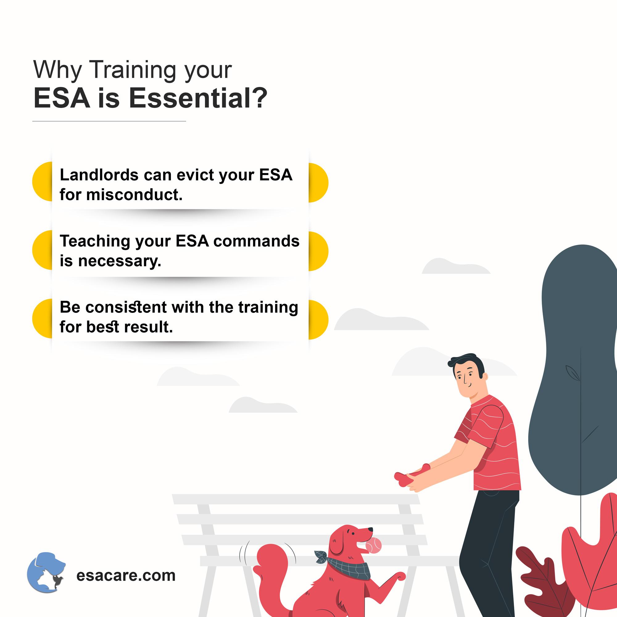 Emotional support animal training