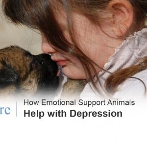 Emotional support animals depression