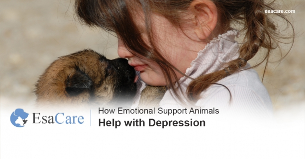 Emotional support animals depression