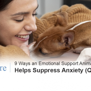 Emotional support animal anxiety