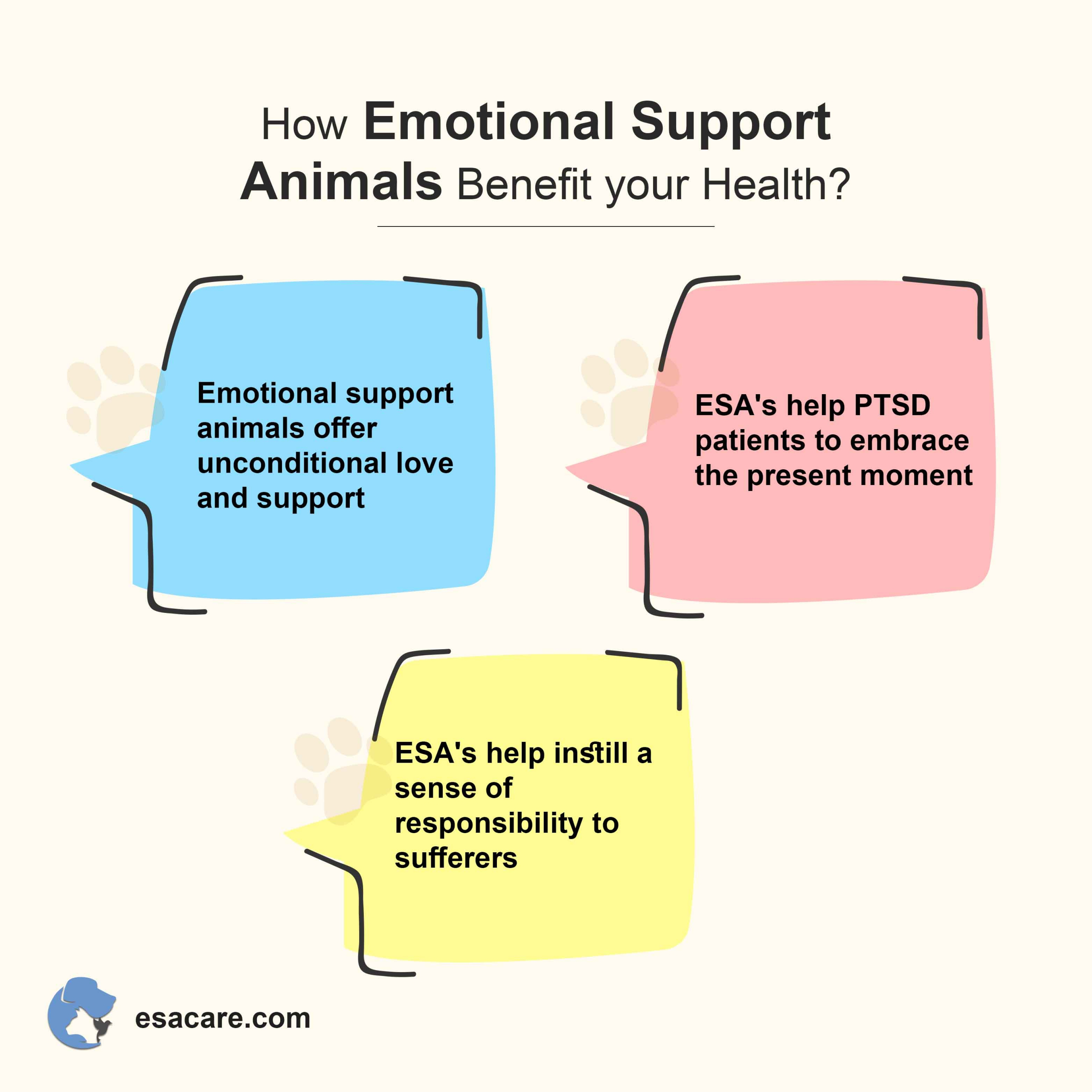 Emotional support animals
