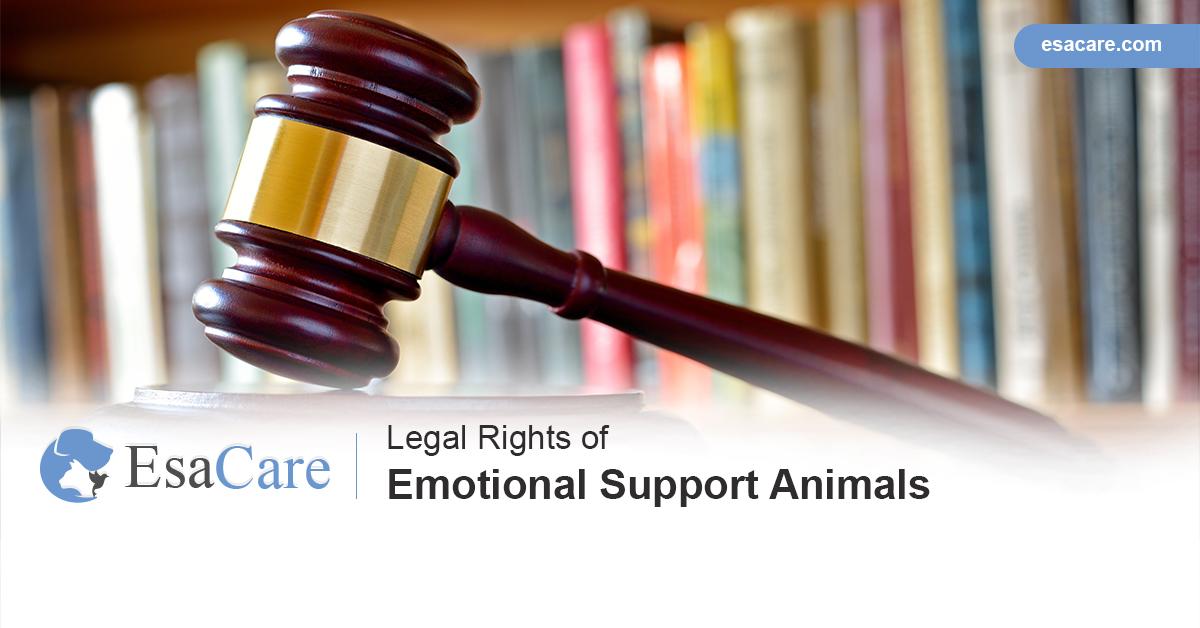 esa legal rights