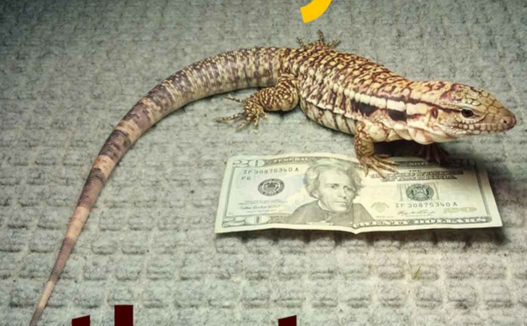 MacGyver ESA Lizard