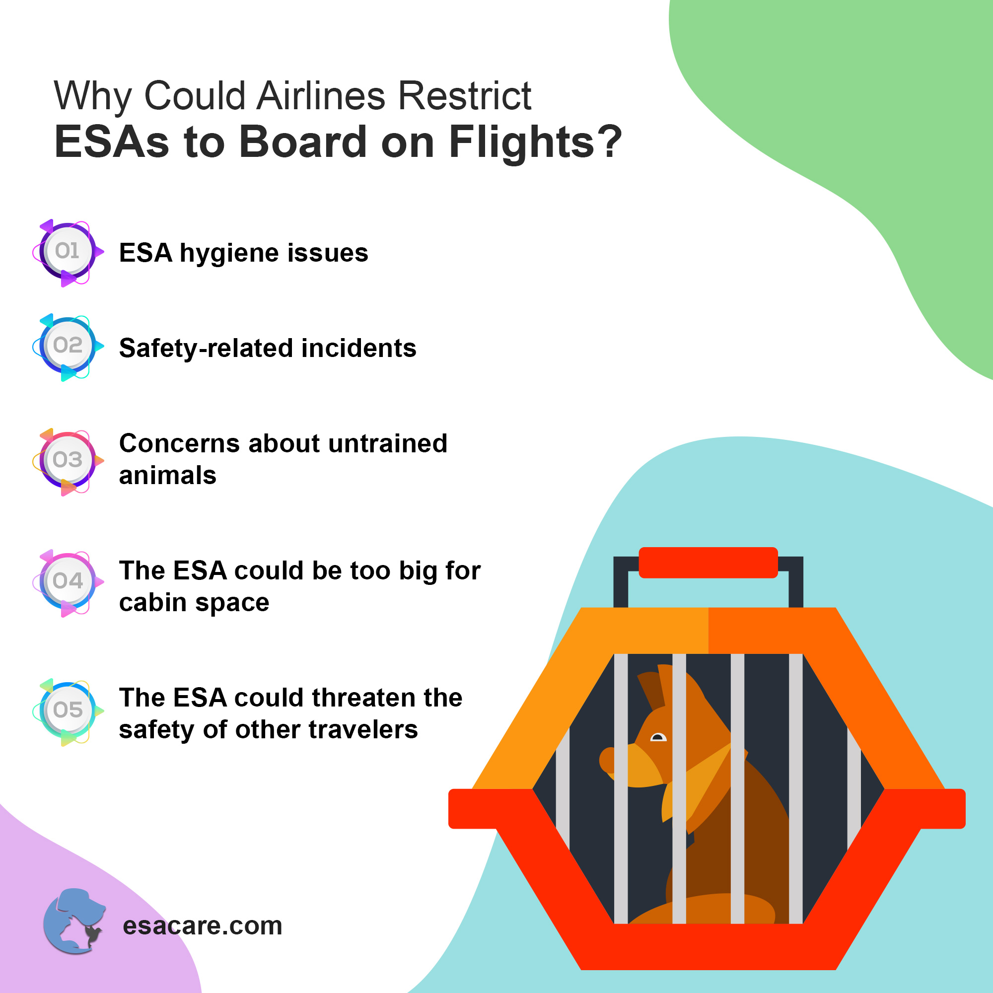 Airlines restrictions ESA