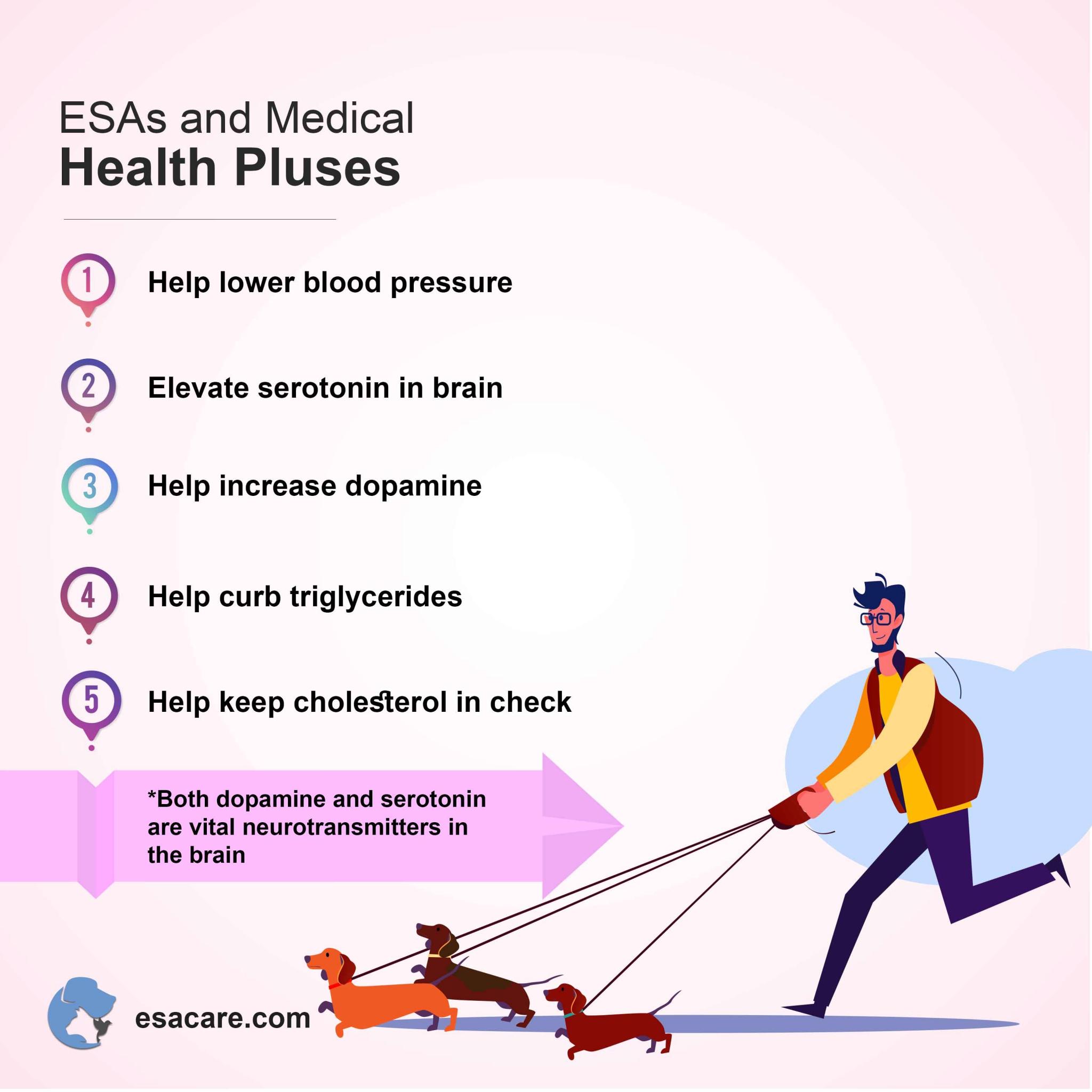 Emotional support animals health benefits