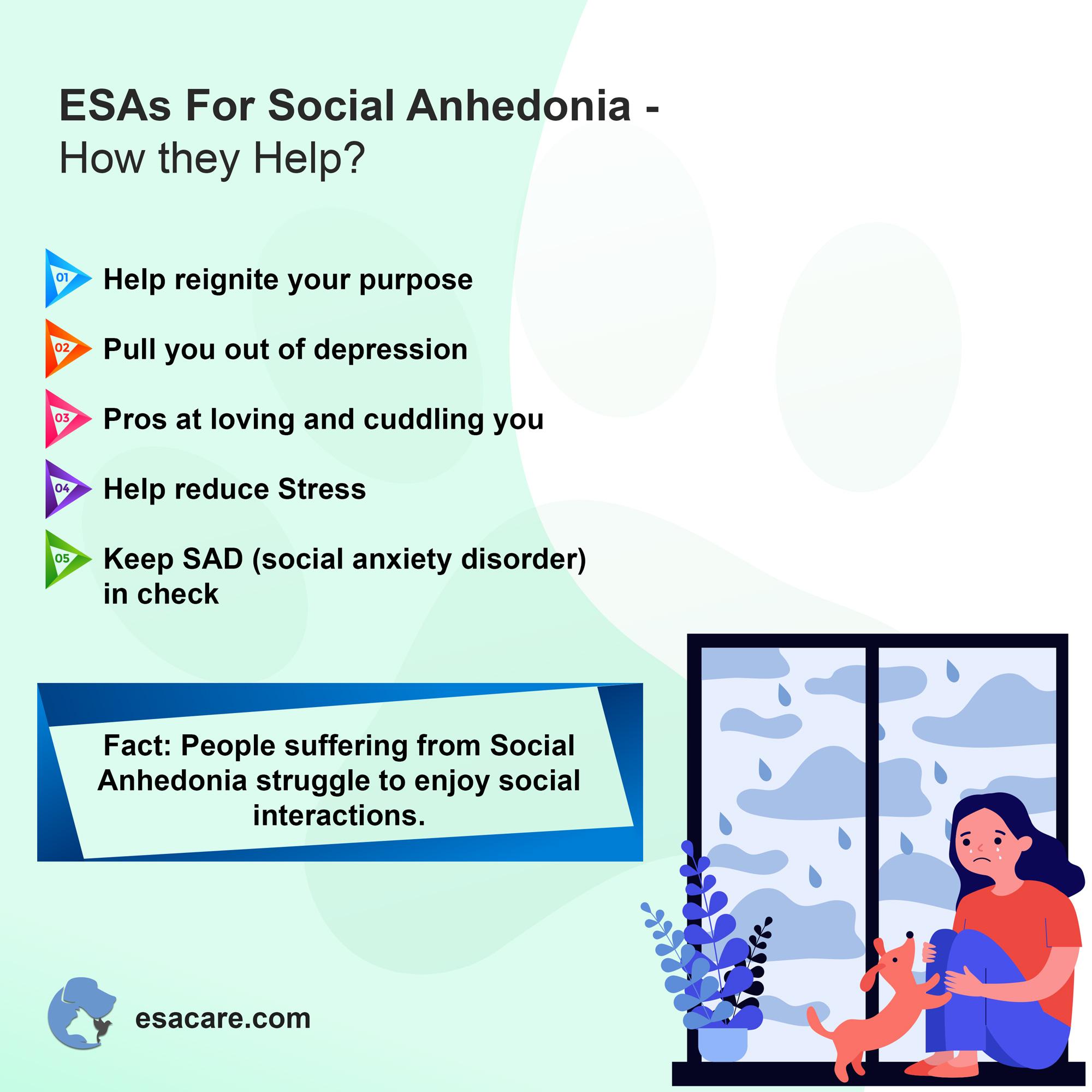 ESAs social anhedonia