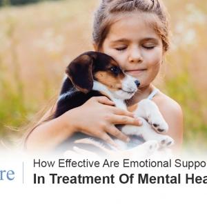 Emotional support animals mental health