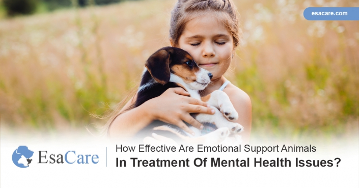 Emotional support animals mental health