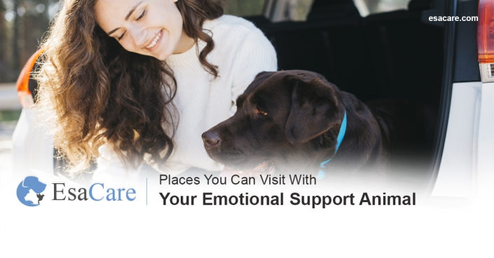 Emotional support animals places to visit