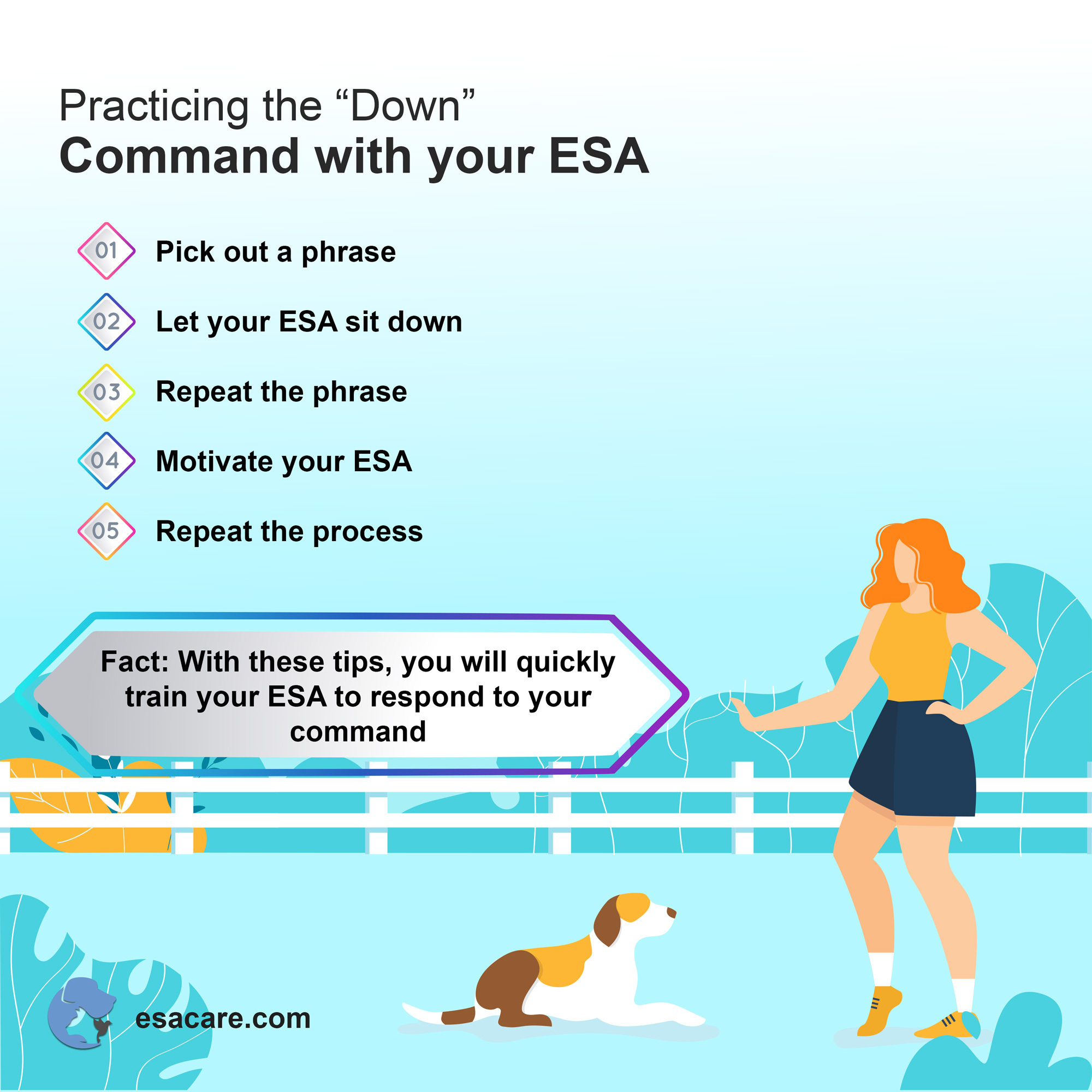 Emotional support animal down command