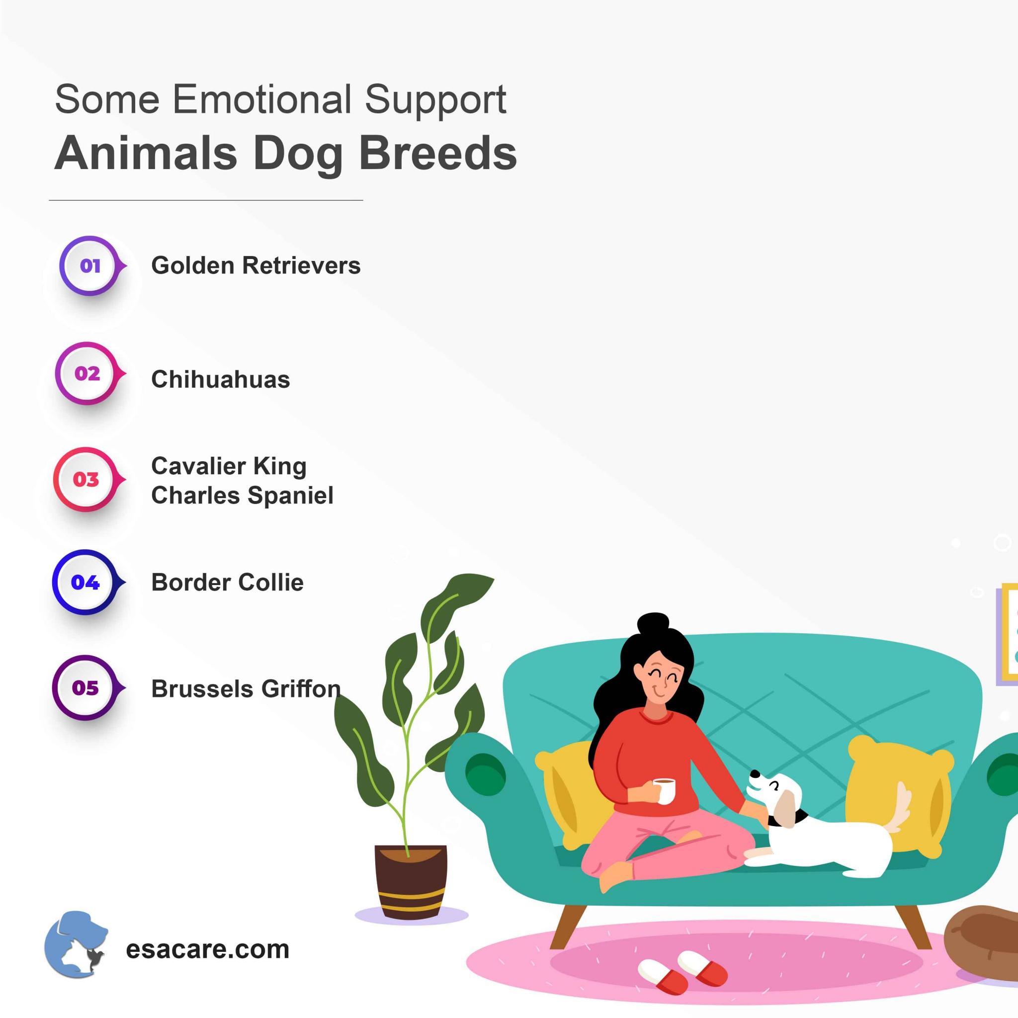 Emotional support animals dog breeds