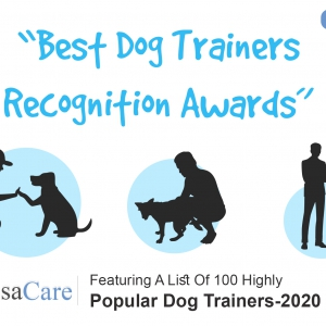 Best Dog Trainers
