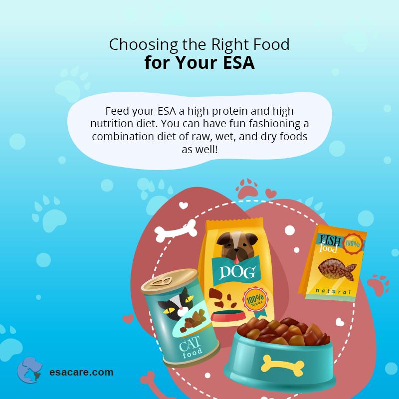 ESA Pet Meals