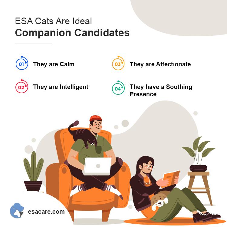 ESA Cats