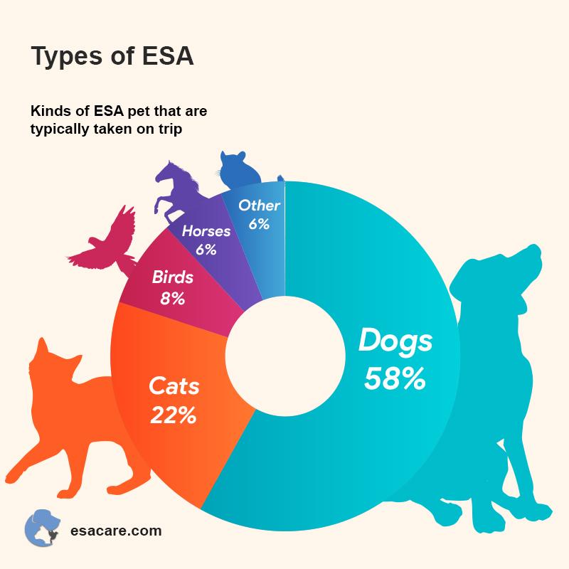 Types of an ESA