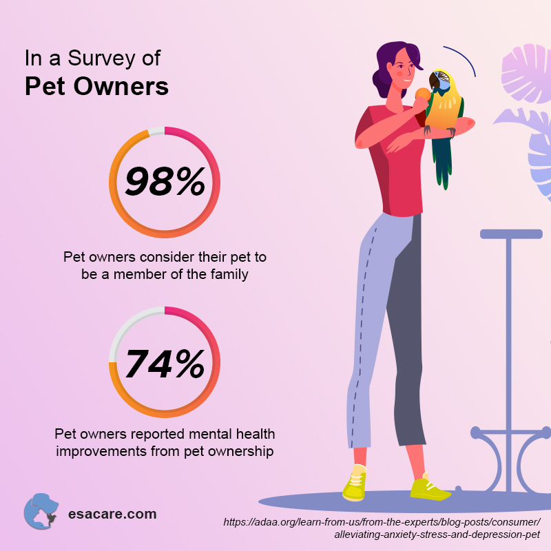 Pet Owners