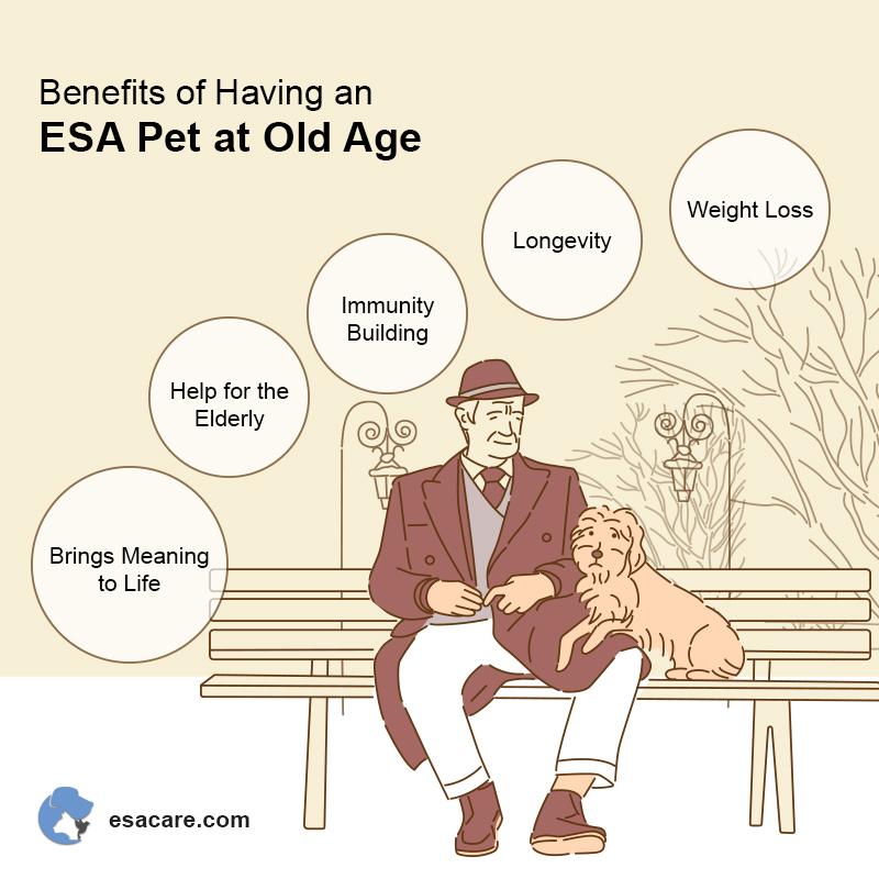 Benefits of ESA Pet