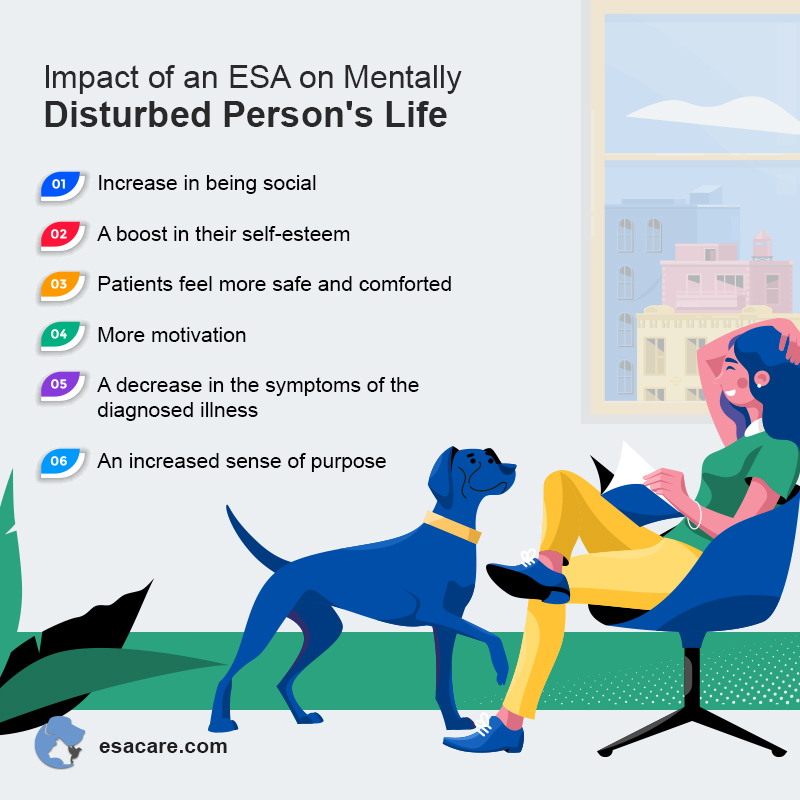 Impact of An ESA