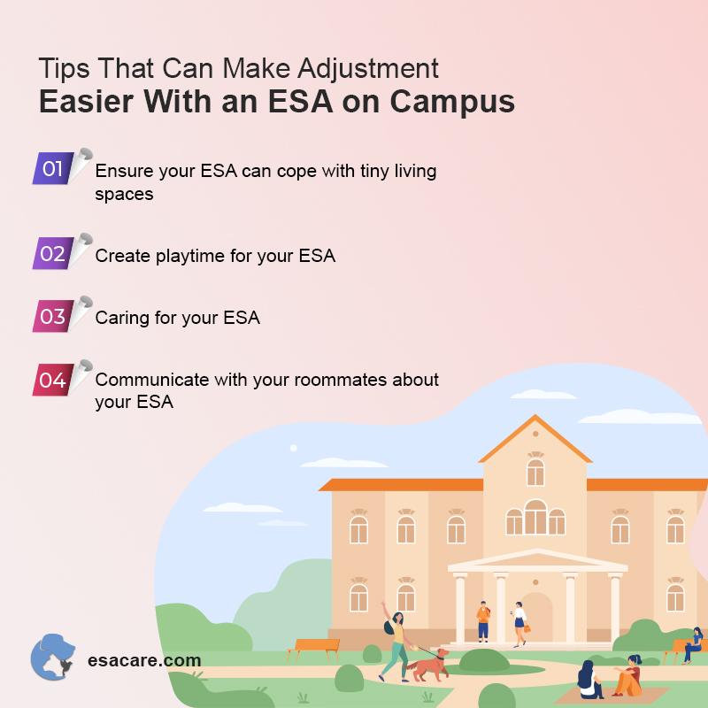 ESA Pet on Campus