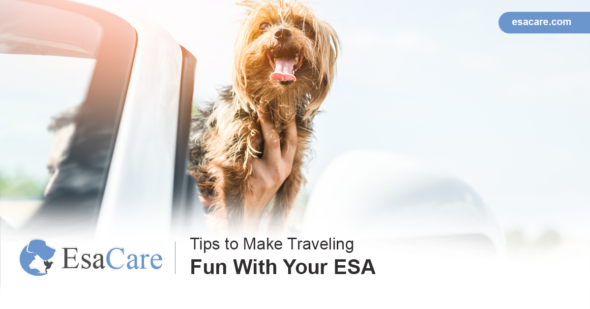 Traveling with an ESA