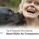ESA Pet for Seniors