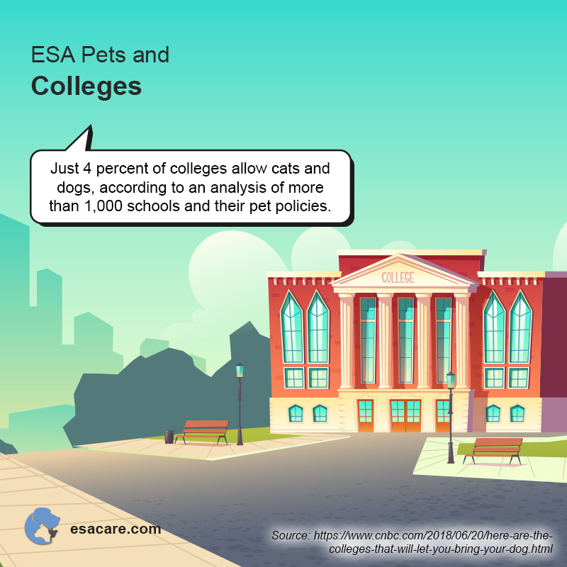 ESA Pets