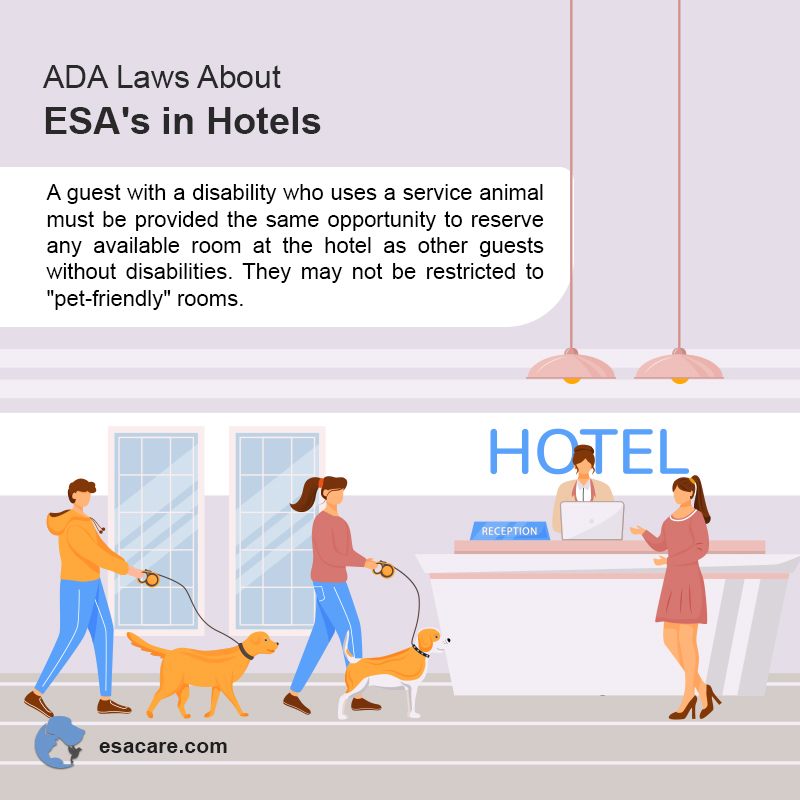 ADA Laws