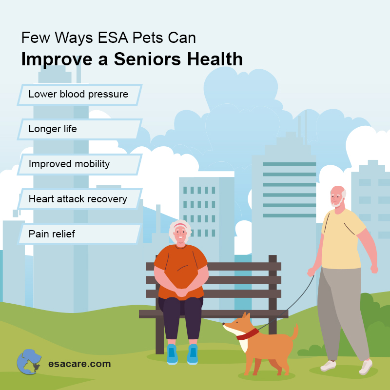 ESA Pets for Seniors
