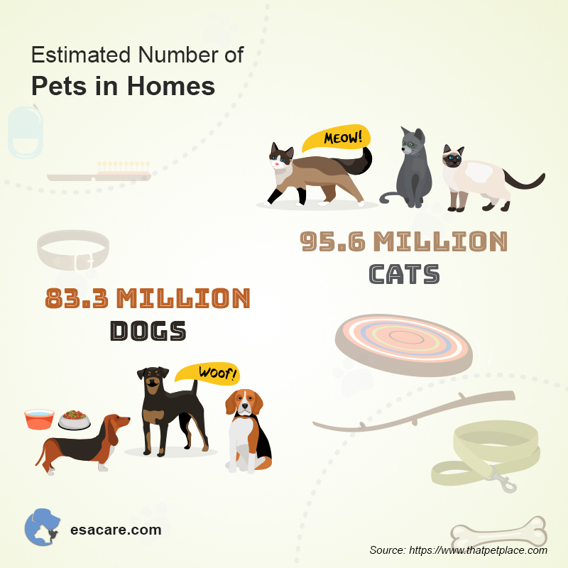 Pets in Homes
