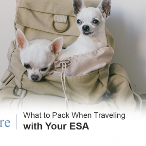Travel with ESA