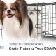 Crate Training ESA