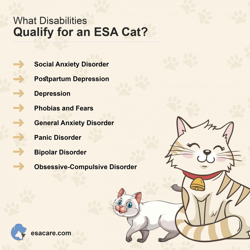 ESA Cat