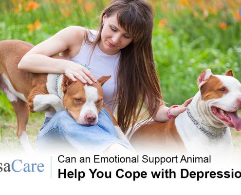 Emotional Support Animal